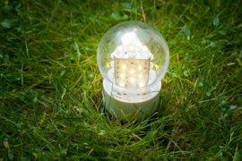 Fot einer LED-Birne
