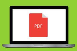 Foto von Computerbildschirm mit PDF Symbol