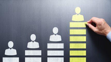 Ein Gehaltsvergleich bringt Sicherheit für GmbH-Chefs